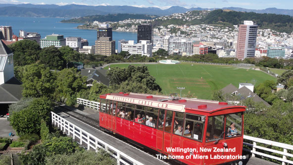 wellington image
